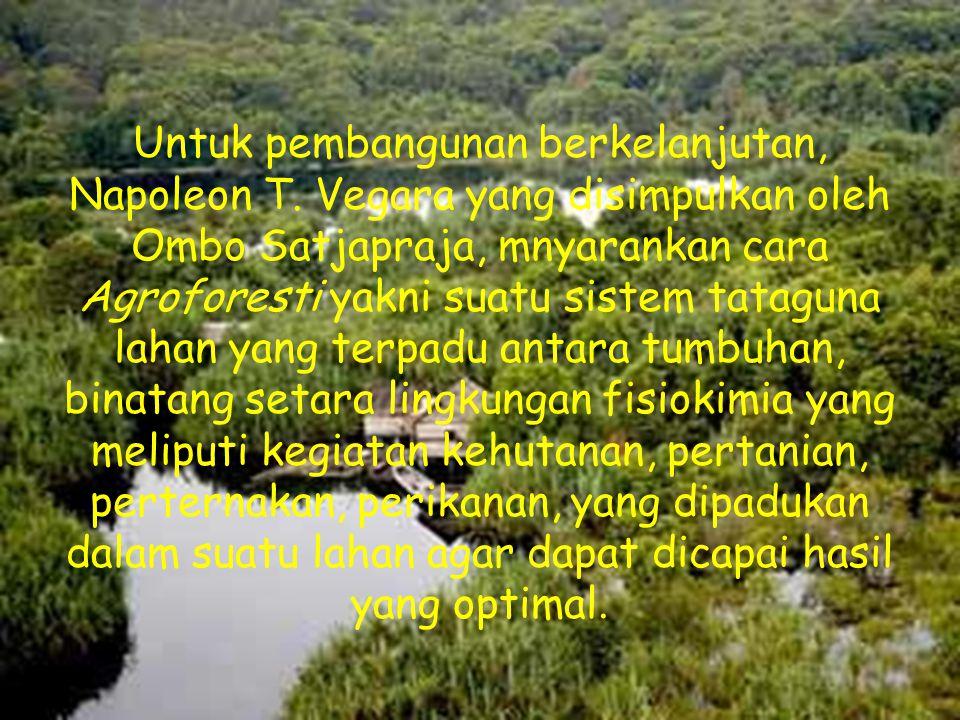 Untuk pembangunan berkelanjutan, Napoleon T. Vegara yang disimpulkan oleh Ombo Satjapraja, mnyarankan cara Agroforesti yakni suatu sistem tataguna lah