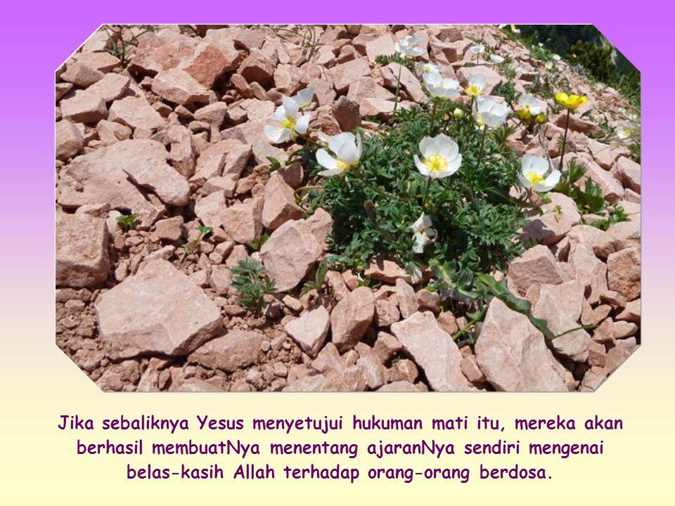 Menurut hukum Taurat, para saksi mata adalah orang pertama yang harus melemparkan batu kepada si pendosa, kemudian diikuti oleh seluruh umat.