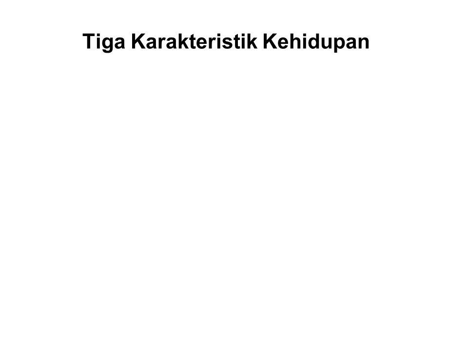 Tiga Karakteristik Kehidupan Anatta – Tanpa inti / Tanpa diri There is no permanent or unchanging self.