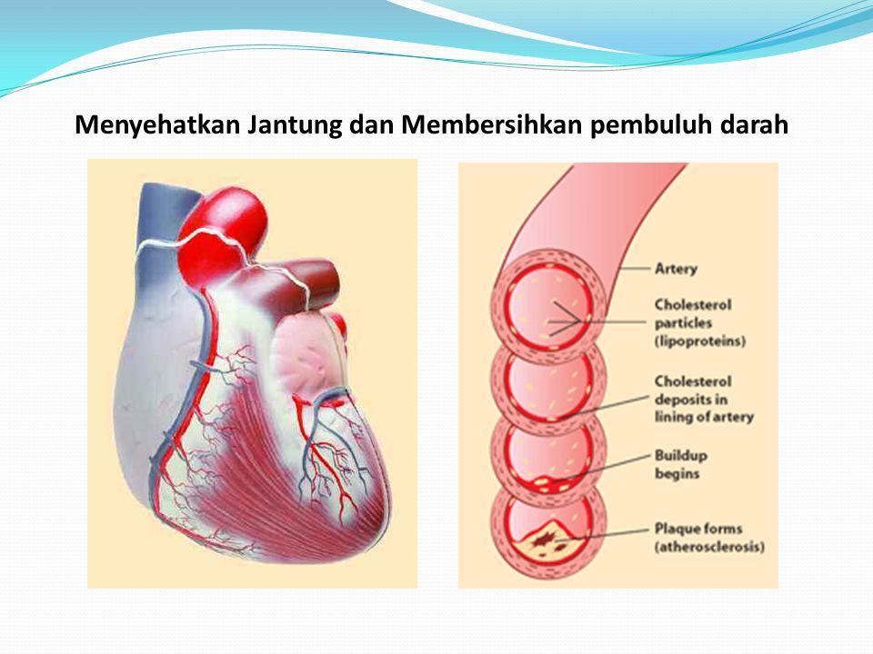Dengan Antioxidant Tanpa Antioxidant kesehatan