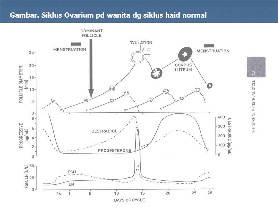 29 Gambar. Siklus Ovarium pd wanita dg siklus haid normal