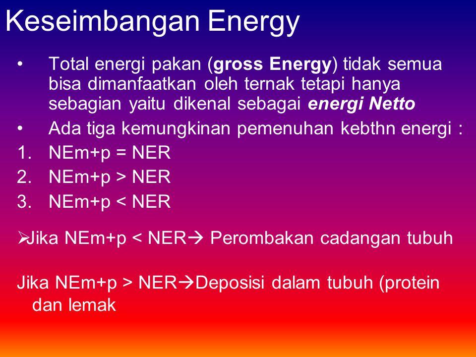Keseimbangan Energy •Total energi pakan (gross Energy) tidak semua bisa dimanfaatkan oleh ternak tetapi hanya sebagian yaitu dikenal sebagai energi Ne