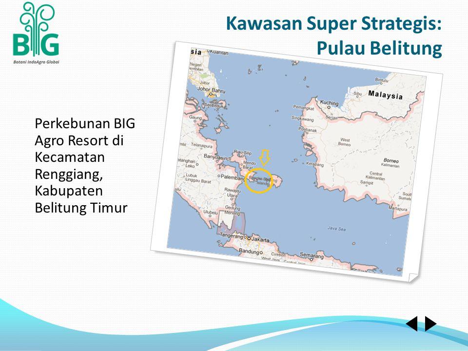 Perkebunan BIG Agro Resort di Kecamatan Renggiang, Kabupaten Belitung Timur Kawasan Super Strategis: Pulau Belitung