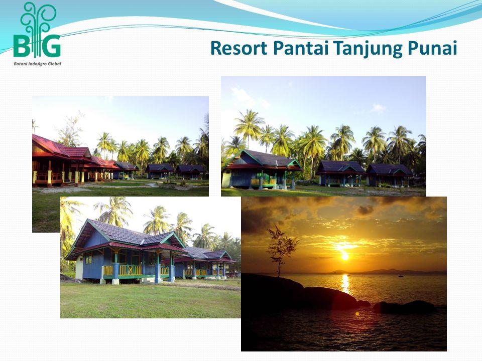 Resort Pantai Tanjung Punai