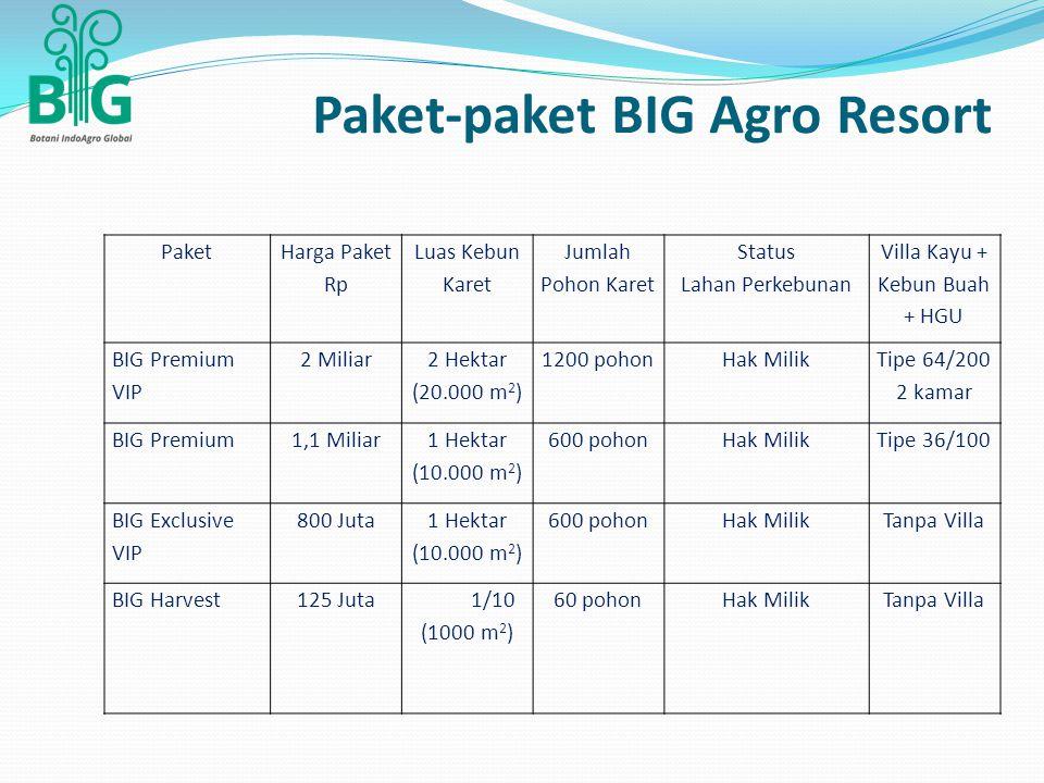 Paket-paket BIG Agro Resort Paket Harga Paket Rp Luas Kebun Karet Jumlah Pohon Karet Status Lahan Perkebunan Villa Kayu + Kebun Buah + HGU BIG Premium VIP 2 Miliar 2 Hektar (20.000 m 2 ) 1200 pohonHak Milik Tipe 64/200 2 kamar BIG Premium1,1 Miliar 1 Hektar (10.000 m 2 ) 600 pohonHak MilikTipe 36/100 BIG Exclusive VIP 800 Juta 1 Hektar (10.000 m 2 ) 600 pohonHak MilikTanpa Villa BIG Harvest125 Juta1/10 (1000 m 2 ) 60 pohonHak MilikTanpa Villa