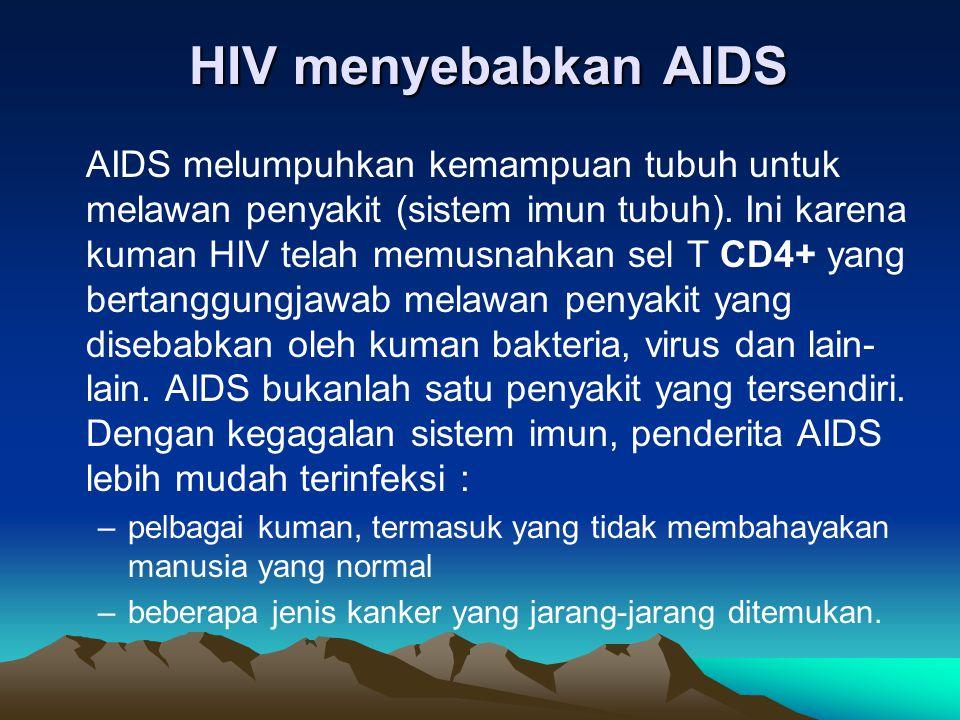 AIDS melumpuhkan kemampuan tubuh untuk melawan penyakit (sistem imun tubuh). Ini karena kuman HIV telah memusnahkan sel T CD4+ yang bertanggungjawab m