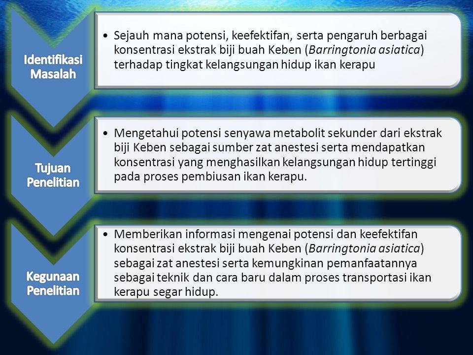 Mudah didapat dan banyak tersebar di daerah pesisir Indonesia (Prohati, 2008) Mengandung kelompok senyawa saponin yang dapat menyebabkan keracunan pada ikan (Tan, 2001) Senyawa saponin yang bersifat sebagai racun ikan paling aktif dari ekstrak Barringtonia asiatica Kurz adalah ranunkosida VIII (Burton et al, 2003).