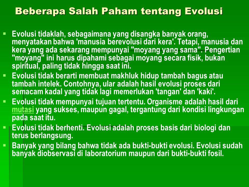 Beberapa Salah Paham tentang Evolusi   Evolusi tidaklah, sebagaimana yang disangka banyak orang, menyatakan bahwa 'manusia berevolusi dari kera'. Te