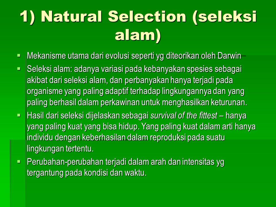 1) Natural Selection (seleksi alam)  Mekanisme utama dari evolusi seperti yg diteorikan oleh Darwin  Seleksi alam: adanya variasi pada kebanyakan sp
