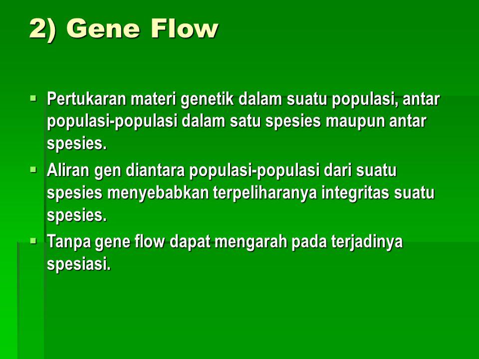 2) Gene Flow  Pertukaran materi genetik dalam suatu populasi, antar populasi-populasi dalam satu spesies maupun antar spesies.  Aliran gen diantara