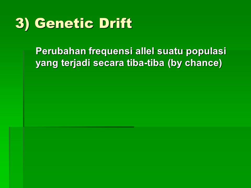 3) Genetic Drift Perubahan frequensi allel suatu populasi yang terjadi secara tiba-tiba (by chance)