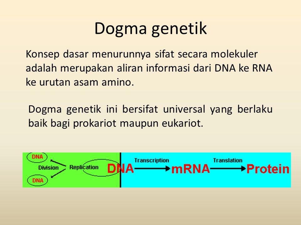 Dogma genetik Konsep dasar menurunnya sifat secara molekuler adalah merupakan aliran informasi dari DNA ke RNA ke urutan asam amino. Dogma genetik ini