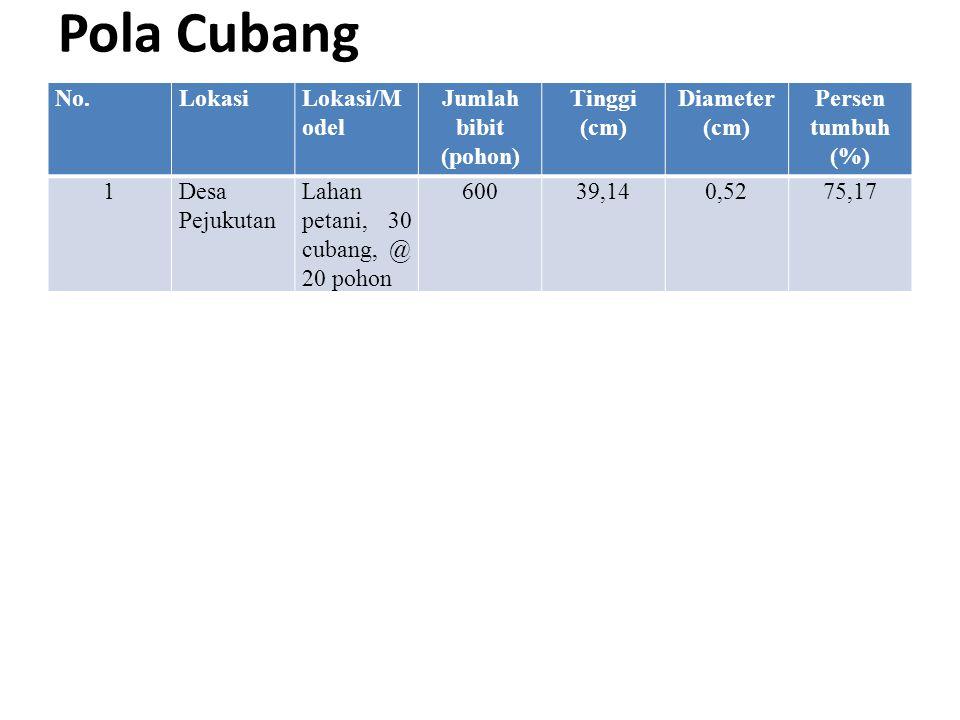Pola Cubang No.LokasiLokasi/M odel Jumlah bibit (pohon) Tinggi (cm) Diameter (cm) Persen tumbuh (%) 1Desa Pejukutan Lahan petani, 30 cubang, @ 20 poho