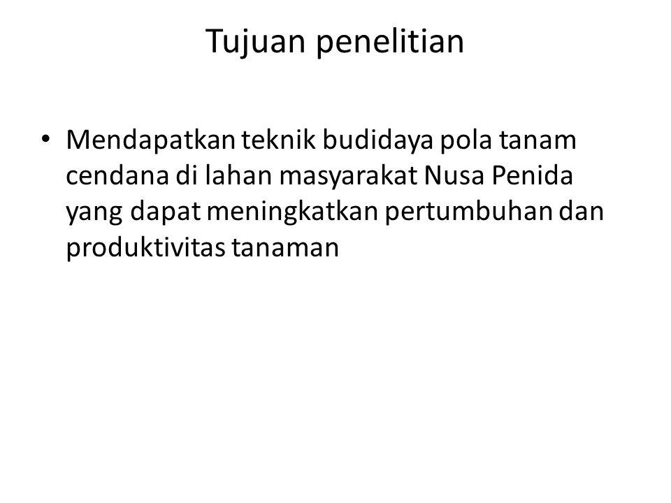 Tujuan penelitian • Mendapatkan teknik budidaya pola tanam cendana di lahan masyarakat Nusa Penida yang dapat meningkatkan pertumbuhan dan produktivit