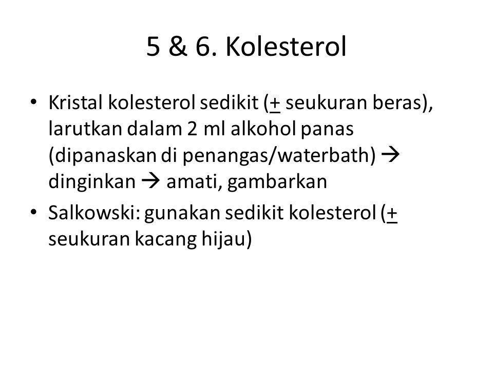 5 & 6. Kolesterol • Kristal kolesterol sedikit (+ seukuran beras), larutkan dalam 2 ml alkohol panas (dipanaskan di penangas/waterbath)  dinginkan 