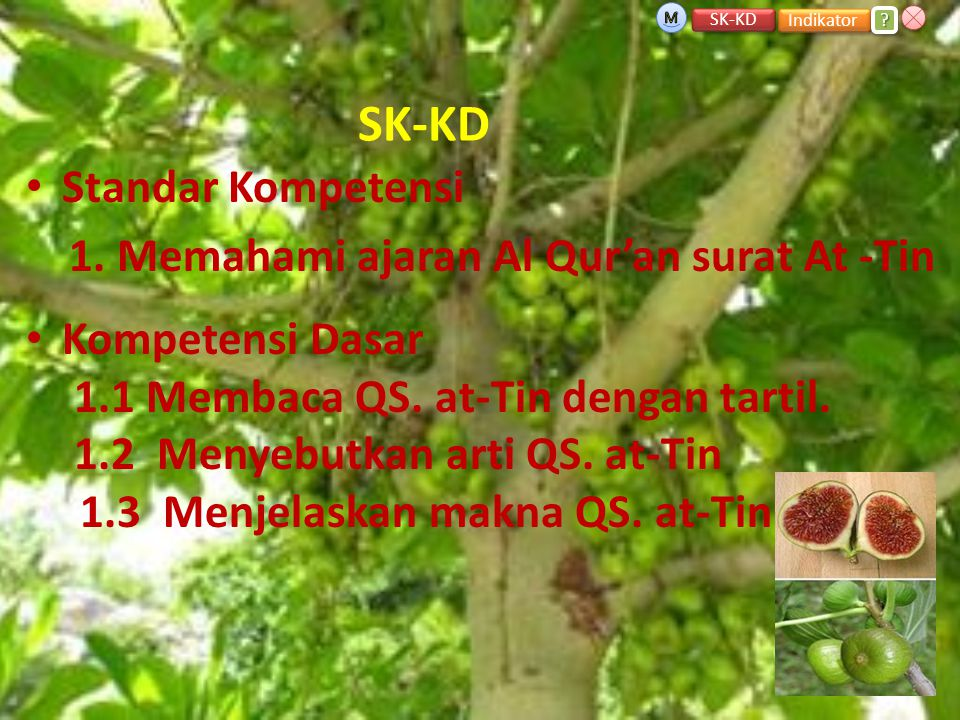 SK-KD • Standar Kompetensi 1.