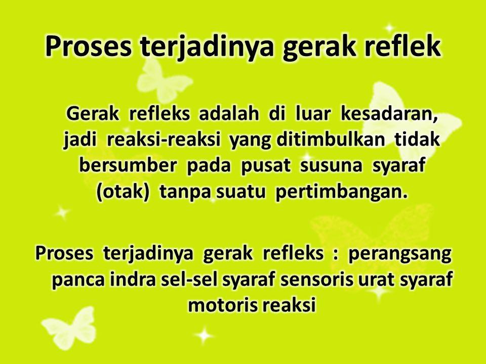 Refleks Reflek adalah gerak reaksi yang tak disadari terhadap perangsang