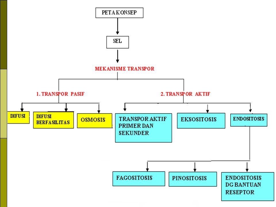 * PRINSIP DASAR TRANSPOR MLL MEMBRAN:  Setiap molekul memiliki kecendrungan utk menempati ruang dg merata  Molekul pd konsentrasi ↑ memiliki tekanan lbh besar  Setiap molekul mempunyai kecendrungan utk selalu bergerak krn mengandung energi kinetik