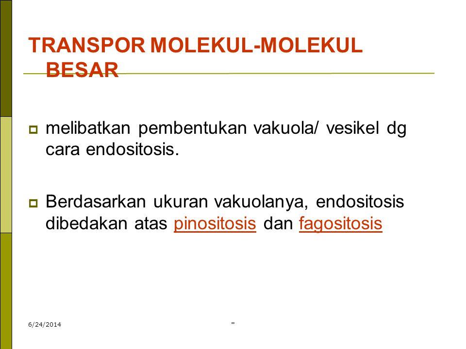 * TRANSPOR MOLEKUL-MOLEKUL BESAR  melibatkan pembentukan vakuola/ vesikel dg cara endositosis.  Berdasarkan ukuran vakuolanya, endositosis dibedakan