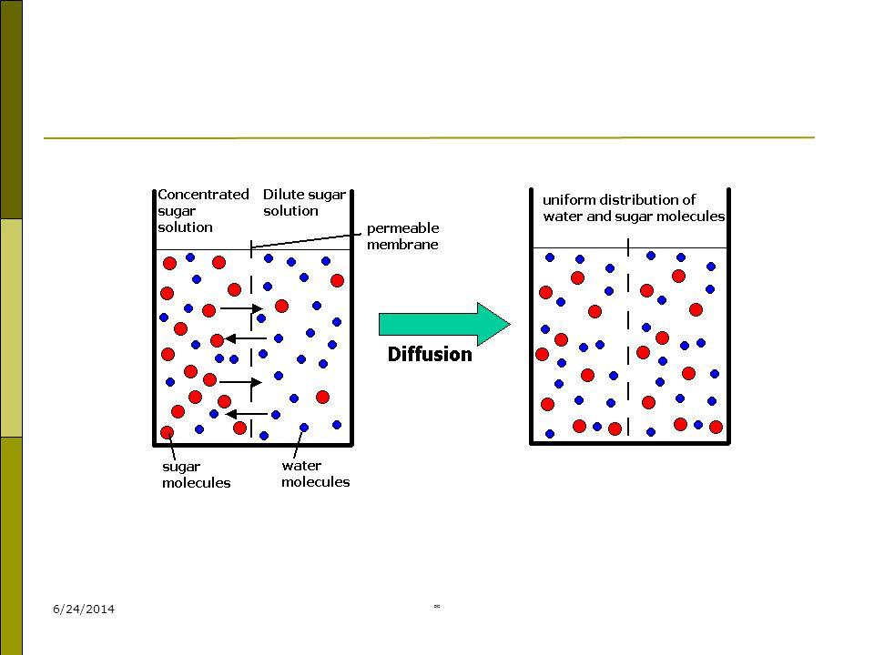 * 2) Mekanisme Difusi Difasilitasi  zat yg dpt mll membran plasma yg melibatkan protein pembawa/protein transporter.