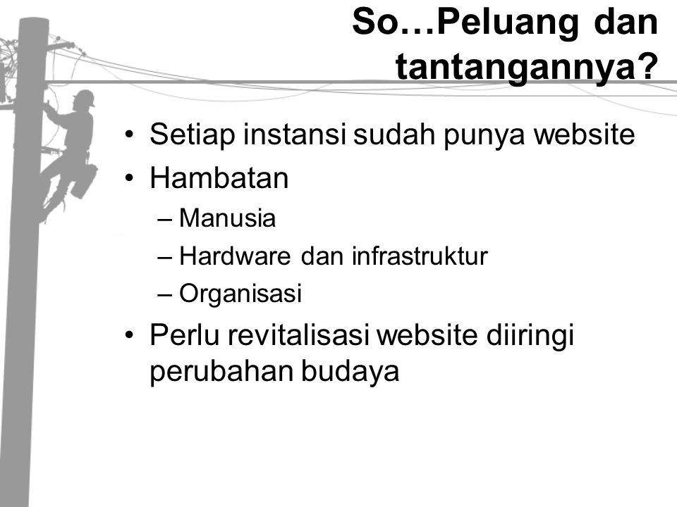 So…Peluang dan tantangannya? •Setiap instansi sudah punya website •Hambatan –Manusia –Hardware dan infrastruktur –Organisasi •Perlu revitalisasi websi