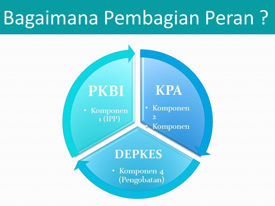 Bagaimana Pembagian Peran ? KPA •Komponen 2 •Komponen 3 DEPKES •Komponen 4 (Pengobatan) PKBI •Komponen 1 (IPP)