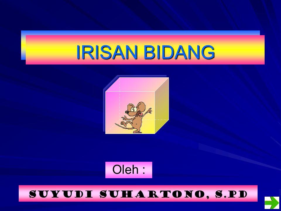 Oleh : Suyudi Suhartono, S.Pd IRISAN BIDANG