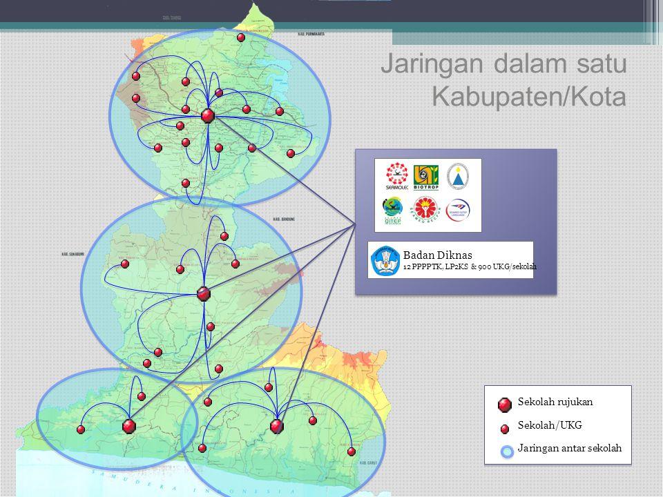 Jaringan dalam satu Kabupaten/Kota Sekolah rujukan Sekolah/UKG Jaringan antar sekolah Badan Diknas 12 PPPPTK, LP2KS & 900 UKG/sekolah