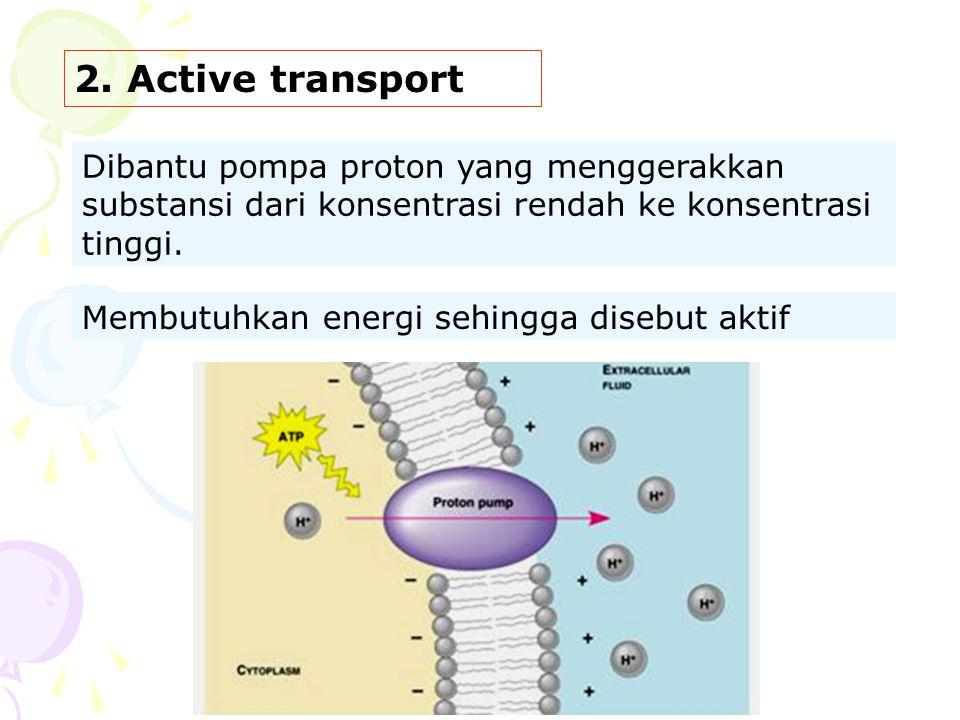 2. Active transport Dibantu pompa proton yang menggerakkan substansi dari konsentrasi rendah ke konsentrasi tinggi. Membutuhkan energi sehingga disebu