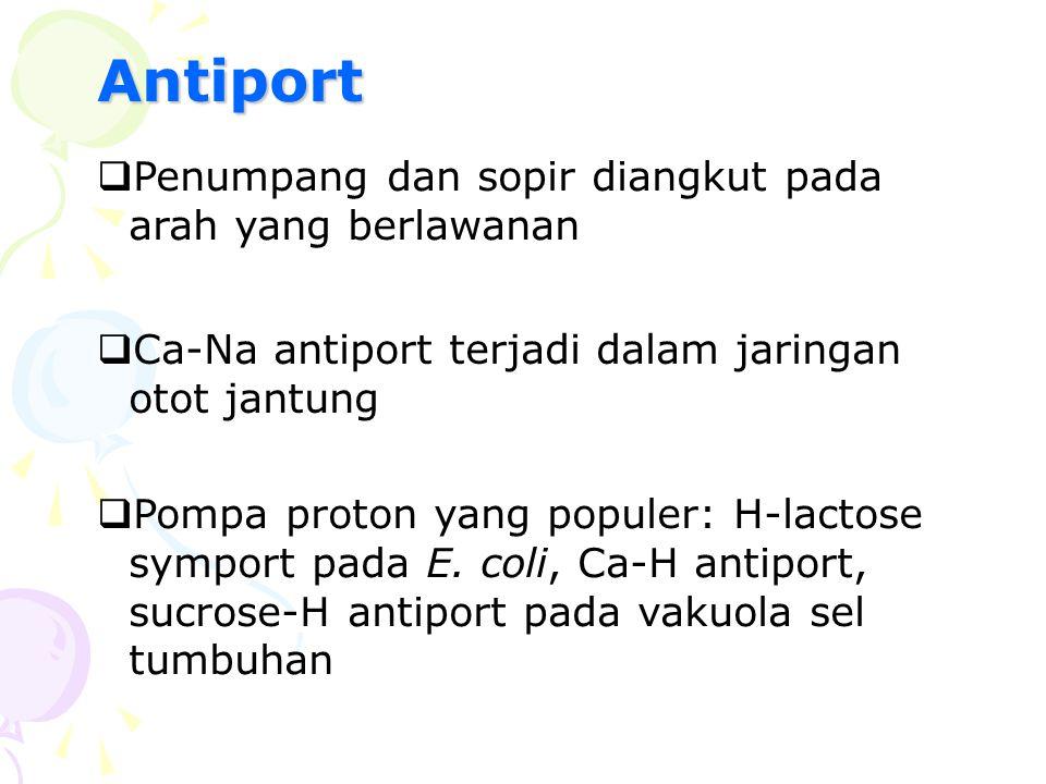 Antiport  Penumpang dan sopir diangkut pada arah yang berlawanan  Ca-Na antiport terjadi dalam jaringan otot jantung  Pompa proton yang populer: H-
