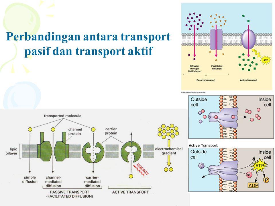 Perbandingan antara transport pasif dan transport aktif