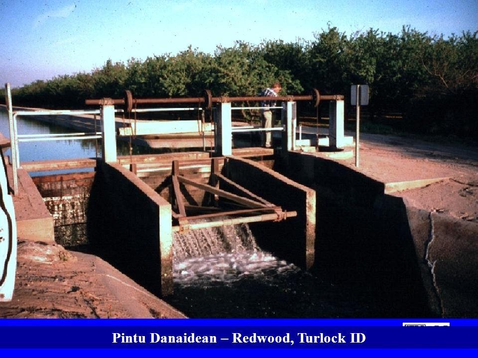 Pintu Danaidean – Redwood, Turlock ID