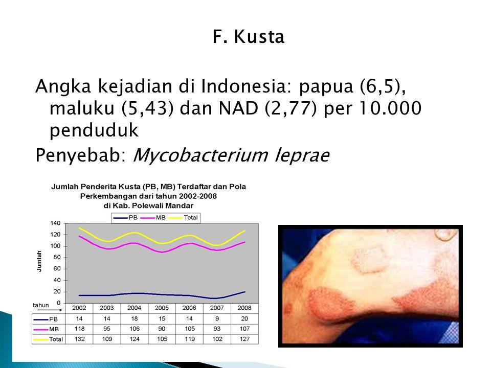 F. Kusta Angka kejadian di Indonesia: papua (6,5), maluku (5,43) dan NAD (2,77) per 10.000 penduduk Penyebab: Mycobacterium leprae