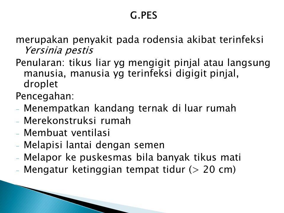 G.PES merupakan penyakit pada rodensia akibat terinfeksi Yersinia pestis Penularan: tikus liar yg mengigit pinjal atau langsung manusia, manusia yg te