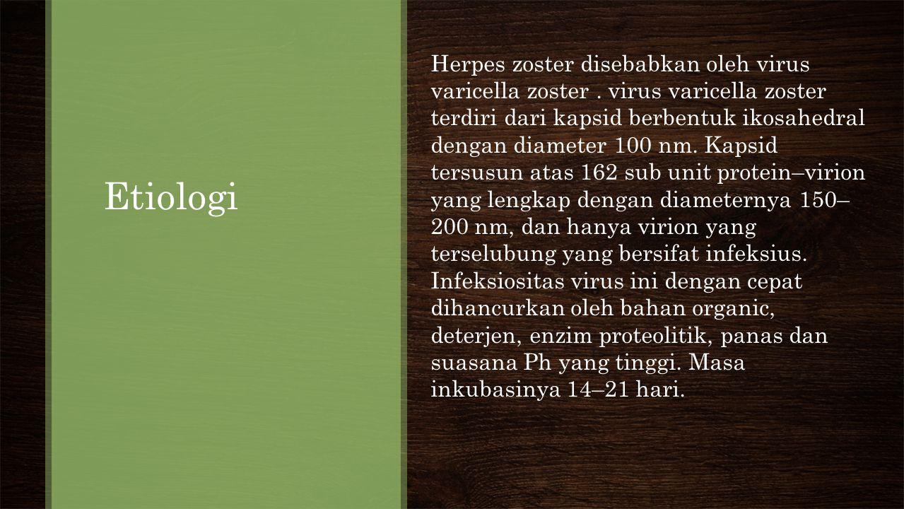 Etiologi Herpes zoster disebabkan oleh virus varicella zoster.