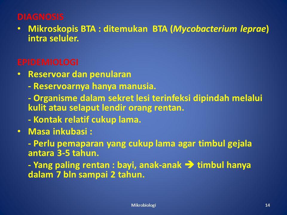 DIAGNOSIS • Mikroskopis BTA : ditemukan BTA (Mycobacterium leprae) intra seluler.