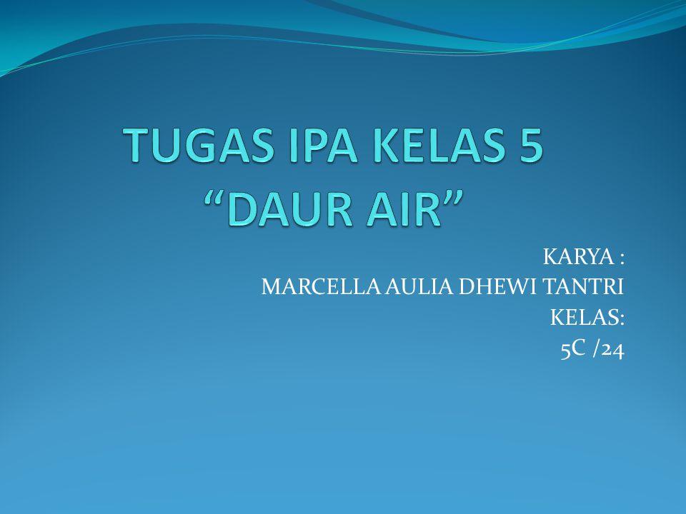 KARYA : MARCELLA AULIA DHEWI TANTRI KELAS: 5C /24