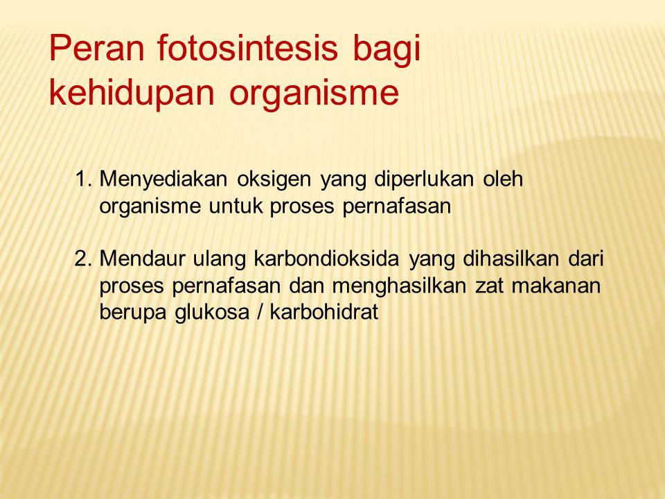 Peran fotosintesis bagi kehidupan organisme 1.Menyediakan oksigen yang diperlukan oleh organisme untuk proses pernafasan 2.Mendaur ulang karbondioksid