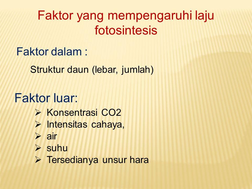 Faktor yang mempengaruhi laju fotosintesis Faktor dalam : Struktur daun (lebar, jumlah) Faktor luar:  Konsentrasi CO2  Intensitas cahaya,  air  su