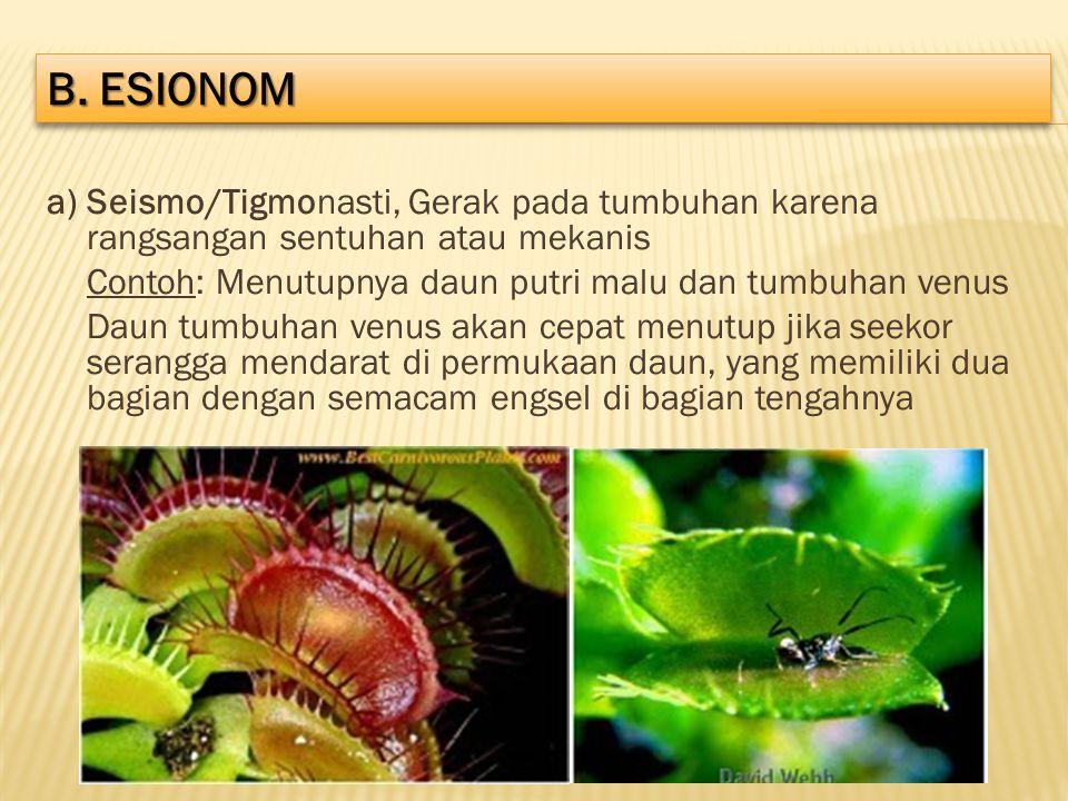 a) Seismo/Tigmonasti, Gerak pada tumbuhan karena rangsangan sentuhan atau mekanis Contoh: Menutupnya daun putri malu dan tumbuhan venus Daun tumbuhan