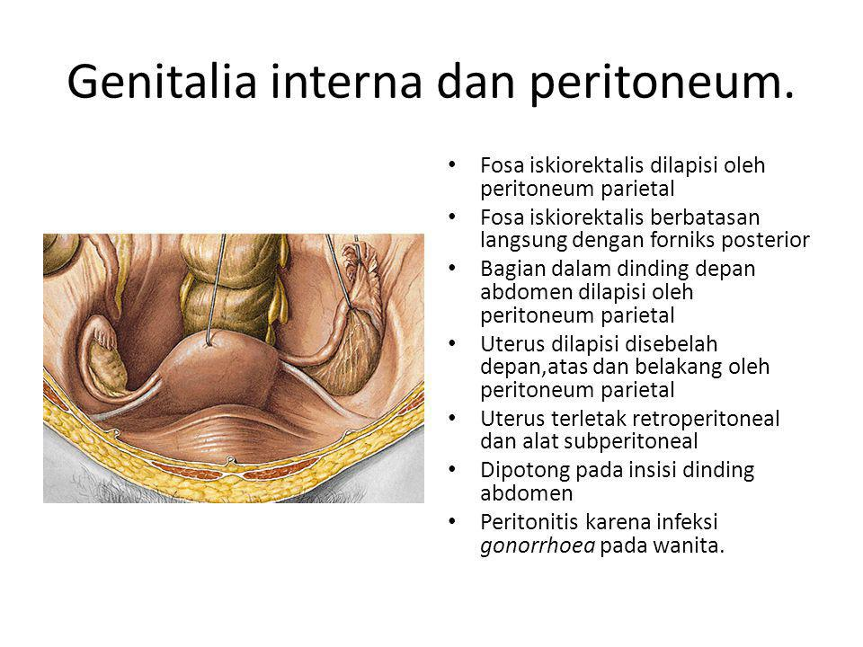 Episiotomy.