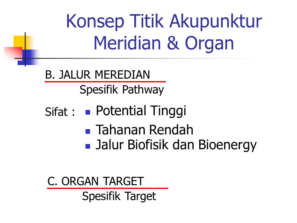 Konsep Titik Akupunktur Meridian & Organ B.