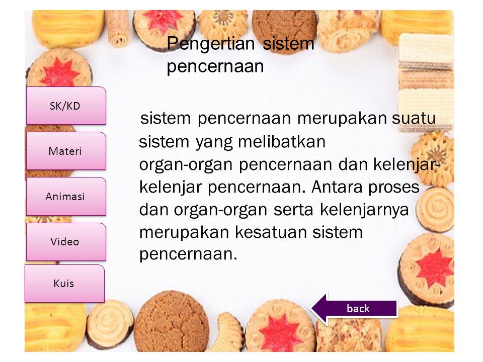 SK/KD Video Materi Animasi Kuis Pengertian sistem pencernaan sistem pencernaan merupakan suatu sistem yang melibatkan organ-organ pencernaan dan kelen