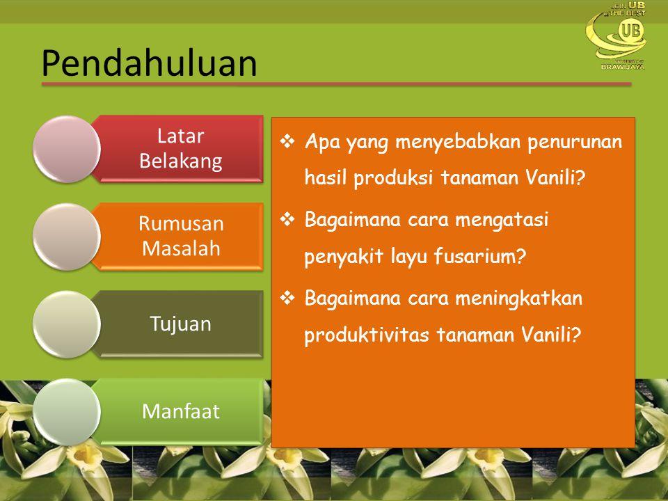  Apa yang menyebabkan penurunan hasil produksi tanaman Vanili?  Bagaimana cara mengatasi penyakit layu fusarium?  Bagaimana cara meningkatkan produ