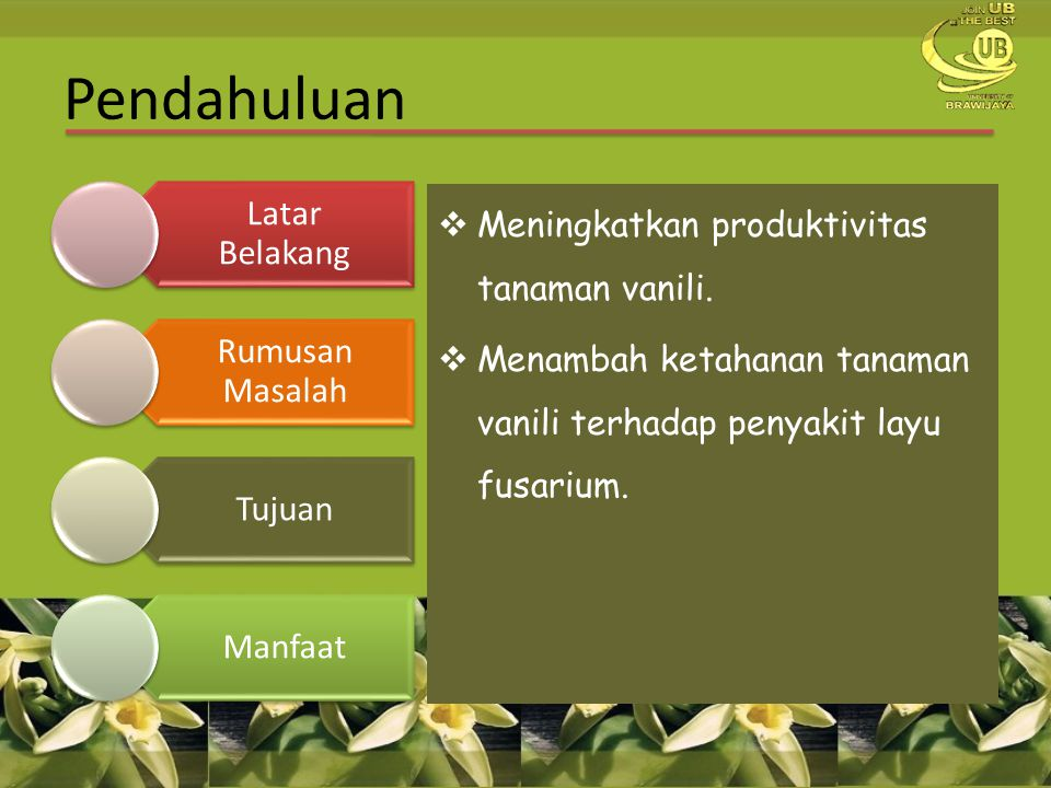  Meningkatkan produktivitas tanaman vanili.  Menambah ketahanan tanaman vanili terhadap penyakit layu fusarium. Pendahuluan Latar Belakang Rumusan M