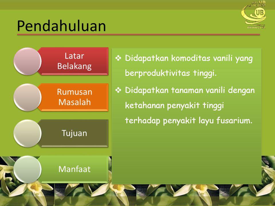  Didapatkan komoditas vanili yang berproduktivitas tinggi.  Didapatkan tanaman vanili dengan ketahanan penyakit tinggi terhadap penyakit layu fusari