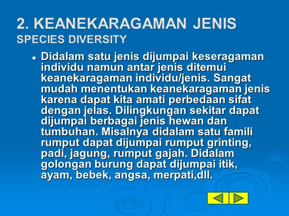 Didalam satu jenis dijumpai keseragaman individu namun antar jenis ditemui keanekaragaman individu/jenis.