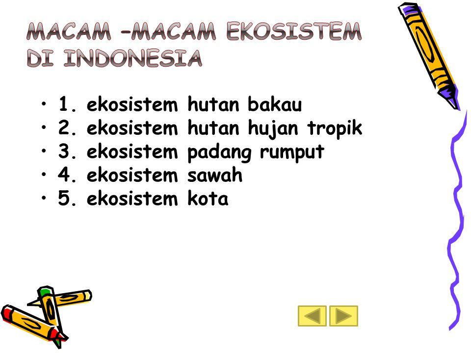 •1.ekosistem hutan bakau •2. ekosistem hutan hujan tropik •3.