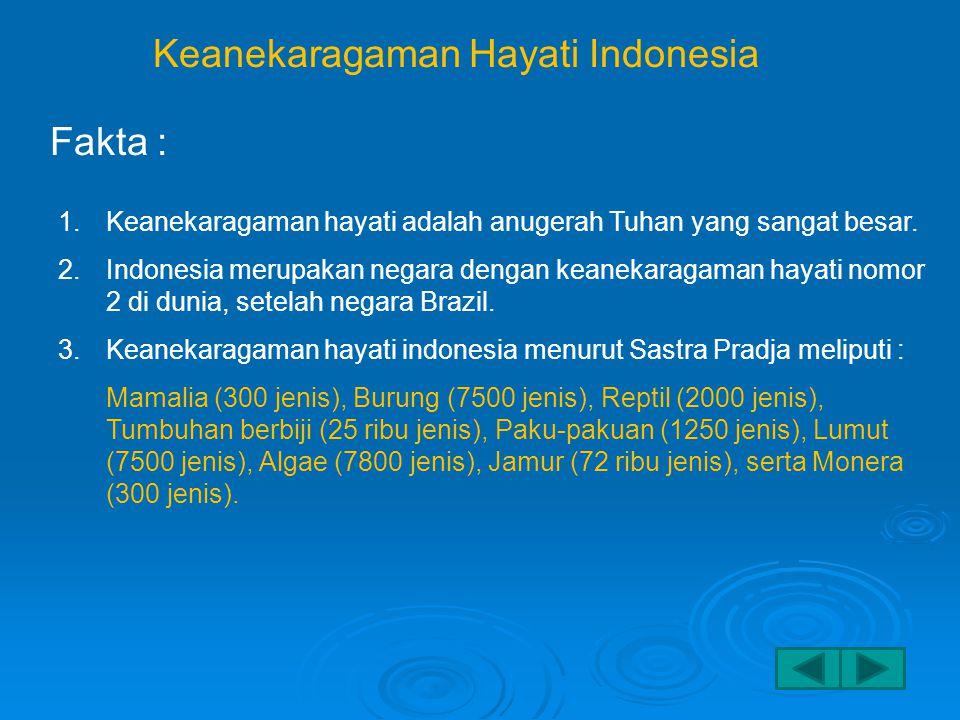 Keanekaragaman Hayati Indonesia Fakta : 1.Keanekaragaman hayati adalah anugerah Tuhan yang sangat besar.