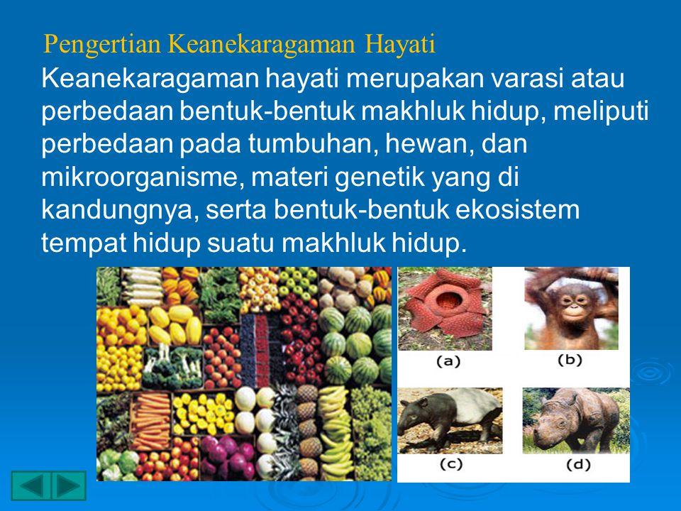 Pengertian Keanekaragaman Hayati Keanekaragaman hayati merupakan varasi atau perbedaan bentuk-bentuk makhluk hidup, meliputi perbedaan pada tumbuhan, hewan, dan mikroorganisme, materi genetik yang di kandungnya, serta bentuk-bentuk ekosistem tempat hidup suatu makhluk hidup.